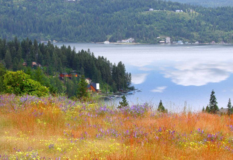 Idaho's Natural Beauty is Easily Accessible from GuestHouse Coeur d'Alene